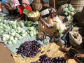 Women selling eggplants Stock Photography