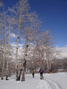 Women snowshoeing Royalty Free Stock Photo