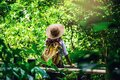 Women travel relax nature in the holiday. Nature Study in the forest. The Girl happy walking and enjoying Tourism in through the