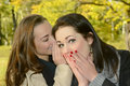 Women whispering beautiful sisters in autumn park Royalty Free Stock Image