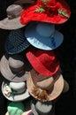 Womens Hats Royalty Free Stock Photo