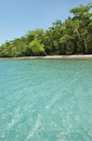 Wonderful beach with clear and calm water white sand and threes Royalty Free Stock Photos
