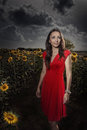 Wonderful girl in field of sunflowers Royalty Free Stock Image