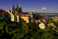 Wonderful prague cityscape with cathedral and the fortress as the sun sets grape leaves in the foreground Stock Photos