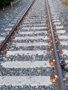 stock image of  A wonderful rail photography