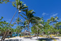 A wonderful resort in tropical paradise white sand beach tonga polynesia Stock Photography