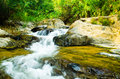 Wonderful view waterfall thailand Royalty Free Stock Image
