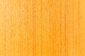 Wood background close up of texture Stock Images
