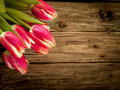 Wood background with fresh red tulip decoration old weathered of a bunch of flowers in the corner copyspace Royalty Free Stock Photo
