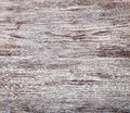 Wood background grain texture, wooden desk table, old striped ti Royalty Free Stock Photo