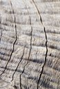 Wood Background And Texture - ...