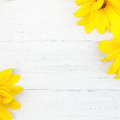 Wood background with yellow flowers textured white painted pretty vibrant summer in two diagonal corners and copyspace between Stock Images