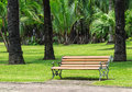 Wood bench with alloy structure in palm garden summertime Stock Images