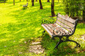 Wood benches with cast iron frame in park bangkok Royalty Free Stock Photo