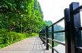 Wood Boardwalk In Nature Reser...