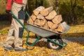 Wood on borrow Royalty Free Stock Photo