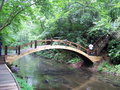 Wood bridge clear creek forest Royalty Free Stock Photo