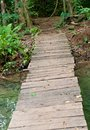 Wood bridge in forest. Royalty Free Stock Photo