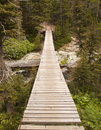 Wood Bridge in Glacier National Park Royalty Free Stock Image
