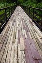 Wood bridge to jungle Royalty Free Stock Photo