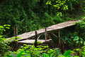 Wood bridge wooden in park erawan kanchanaburi thailand Stock Images
