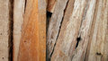 Wood carve fraction Royalty Free Stock Photo