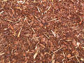 Wood Chip Royalty Free Stock Photo