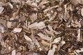 Wood chip background garden mulch made up of mulched and bark used to suppress weed growth Royalty Free Stock Photography