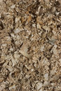Wood chippings Stock Image