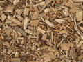 Wood chips chaffed trees for a renewable energy Stock Photos