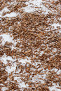 Wood Chips and Snow Stock Photos