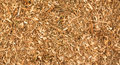 Wood chips texture with a nice natural warm colored Stock Photos