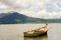 Wood fishing boat and waterfowl bird on in lake chapala with mountain in background Royalty Free Stock Photo
