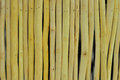 Wood grain bring altogether a table background Stock Image