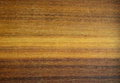 Wood grain lateral lines in Stock Image