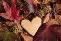 Wood Heart In Autumn