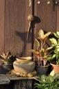 Wood Home Object Jar Dipper