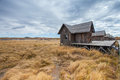 Wood house old in steppe Stock Images
