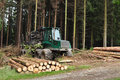 Wood industry deforestation harvester and forest Stock Image