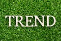 Wood letter in word trend on green grass background Royalty Free Stock Photo