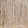 Wood log and cut bamboo background Royalty Free Stock Photo