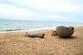 Wood log and wicker chair on beach Royalty Free Stock Photo