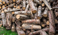 Wood logs pile of background Royalty Free Stock Photos