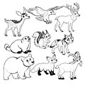 Wood and mountain animals in Black and white Royalty Free Stock Photo
