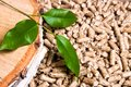 Wood pellets, birch and twig with leaves. Biomass Pellets- cheap energy. The concept of biofuel production Royalty Free Stock Photo