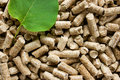 Wood Pellets with a green leaf Stock Photography