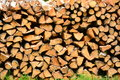 Wood pile a of in sunlight Royalty Free Stock Image