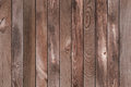 Wood Pine Background
