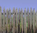 Wood post palisade section Stock Image