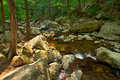 Wood river in Shenandoah National park Royalty Free Stock Image